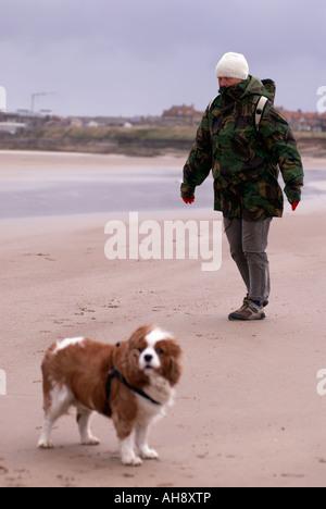 Walker y perro en una ventosa playa Seahouses en Northumberland 'Gran Bretaña'