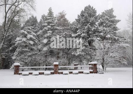 Temporada de invierno en los suburbios de Detroit, Michigan