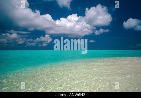 Underwater restinga isla de Maldivas angaga