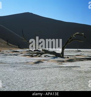 La duna más grande del mundo en Sossusvlei Namibia