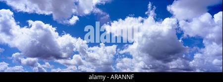 Las nubes cúmulos flotando en el cielo azul profundo de Miami, Florida