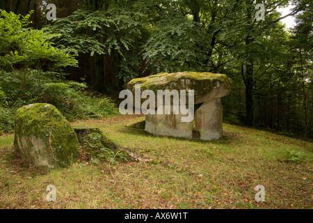 Gwal y Filiast Dolmen cerca Llanboidy en Carmarthenshire, Gales.Woodland sitio encantado. También llamado Arthur's Table.