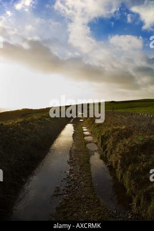Boreen (nombre irlandés para la granja pista) después de fuertes lluvias, cerca de la costa, el cobre Bunmahon, Foto de stock