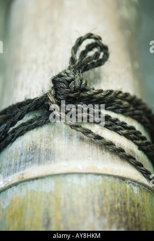 Cadena atada en el nudo alrededor de bambú, close-up