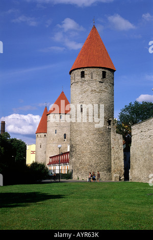 Estonia, Tallinn, el casco antiguo, las murallas de la ciudad medieval Foto de stock