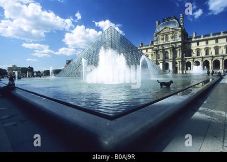 Musee du Louvre Museo y Galería de Arte con Pirámide Pyramide perro disfrutando de las fuentes en la primavera de sol sol París Francia UE