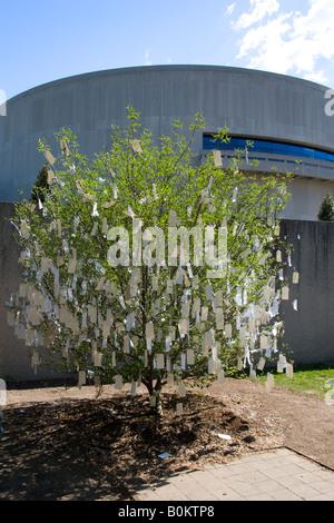 Deseo árbol para Washington DC por Yoko Ono en el Museo y Jardín de Esculturas Hirshhorn EE.UU.