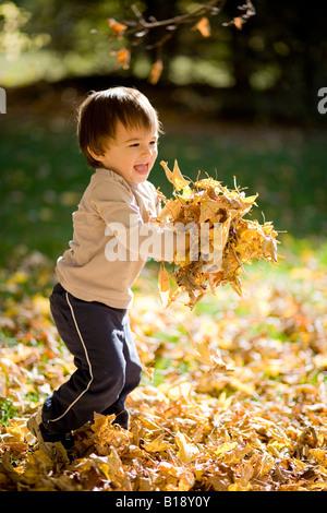22 meses eurasion niño jugando en un montón de otoño las hojas de otoño, Montreal, Quebec, Canadá.