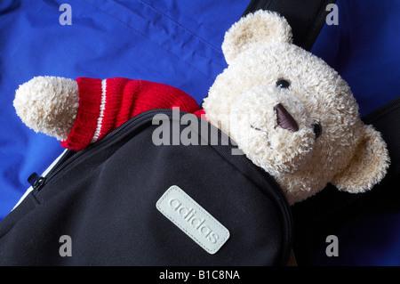 Oso de peluche mirando a través de la mochila
