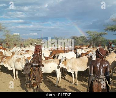"""Hamar mujeres bailan alrededor del ganado en un """"salto del Toro"""" ceremonia como un arco iris que da color a un cielo amenazador sobrecarga. Foto de stock"""