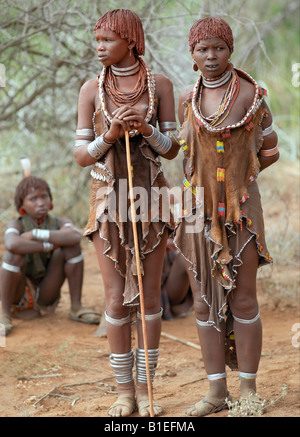 """Hamar mujeres asisten a un """"salto del Toro"""" ceremonia. Los Hamar son pastores seminómades del suroeste de Etiopía. Foto de stock"""