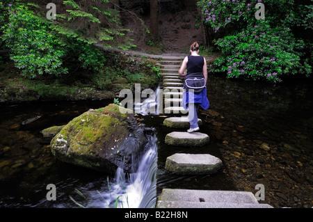 Mujer caminando sobre Stepping Stones pasarela peatonal cruza cruzar el río shimna tollymore condado de Down en Irlanda del Norte