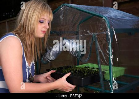Joven mujer de pelo rubio adolescencia veinte tendiendo una bandeja de perejil hierba de plántulas en un mini invernadero en un jardín.