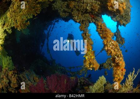 Diver y pequeña cueva Vis Isla del Mar Adriático Croacia