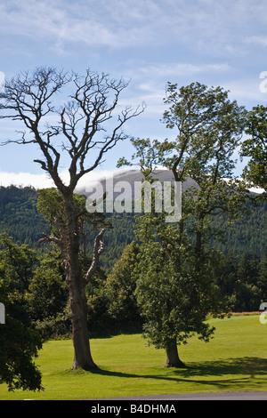 Tollymore parque cerca de Newcastle, las Montañas Mourne, Condado de Down, Irlanda del Norte