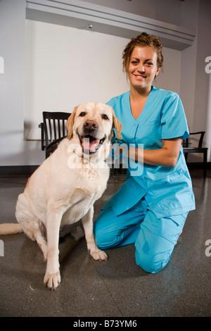 Asistente veterinario con perros en la sala de espera de la clínica ...