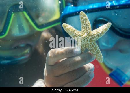 Los niños celebración starfish underwater