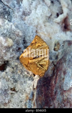 Oro nativo en Cuarzo - Nevada - EE.UU.