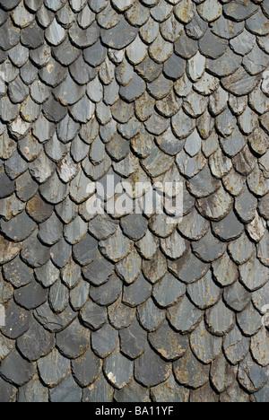 Las tejas de piedra tradicional Auvernia Francia
