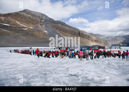Los turistas en campo de hielo de Columbia en Canadá Foto de stock