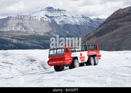 Glaciar Athabasca en Canadian Rockies Foto de stock