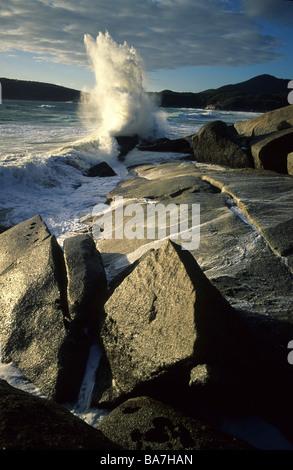 Cerca de rocas de granito cerca de Whisky Bay, Wilsons Promontory National Park, Victoria, Australia Foto de stock