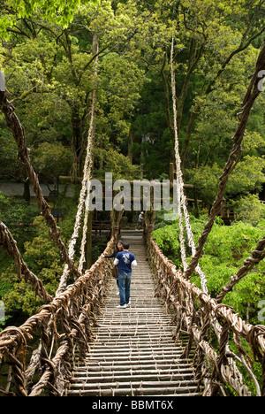 Puente de la vid Kazurabashi Iya Valle de Shikoku, Japón