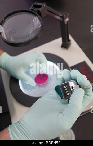 Scientist contando con el recuento de colonias bacterianas máquina