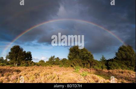 Arco iris en Rockford comunes en el Parque Nacional de New Forest Foto de stock