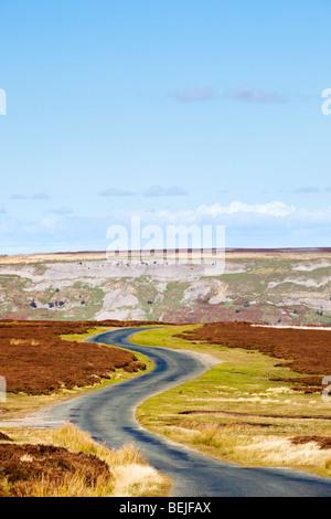 Camino sinuoso en Redmire Moor, Valles de Yorkshire, Inglaterra, Reino Unido en otoño