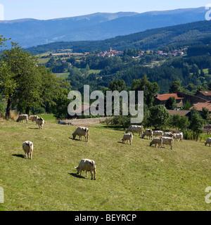 Parc naturel régional Livradois-Forez - villa y granja de San Amand Roche Savine, Auvergne, Francia.