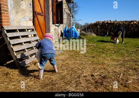 Stock foto de una niña de 3 años de edad ayudando a su madre con las cabras de la familia pequeña.