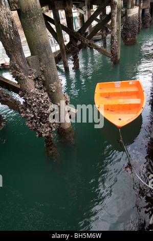 Orange lúgubres cansados hasta el muelle cubierto de percebes en la isla de Waiheke