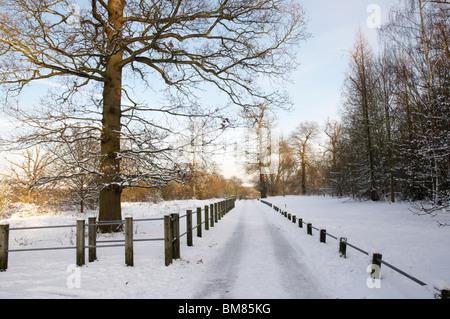 Un sendero cubierto de nieve con una valla