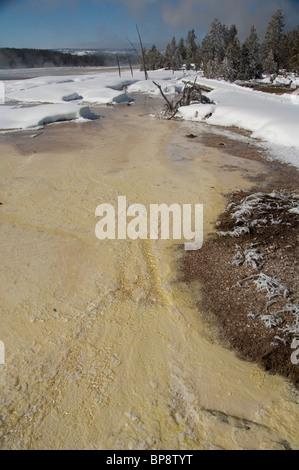 Ee.Uu., Wyoming. El Parque Nacional de Yellowstone. Fountain Paint Pot área. Características geotérmicas, termopila bacterias mat.