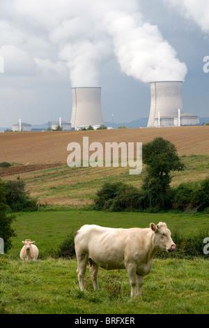 Pastan cerca de la planta de energía nuclear de Cattenom ubicado en la comuna de Cattenom a lo largo del río Mosela, en Francia.