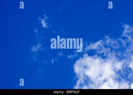 El cielo azul con nubes cirrus mirando hacia arriba