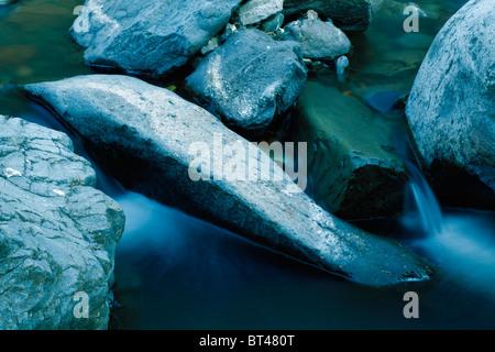 Cerca del río arroyo en río de montaña Foto de stock