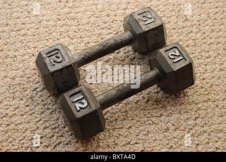 12 libra tonto campanas en alfombras