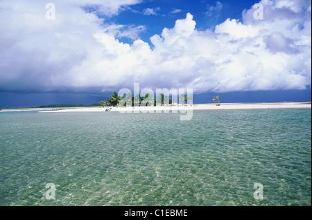 Francia, Polinesia Francesa, Tuamotus, Atolón de Tikehau, pequeña isla aislada (motu)
