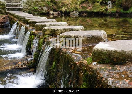 En el Shimna Stepping Stones River, Tollymore Park, Newcastle, Irlanda del Norte, destacados en el Juego de Tronos