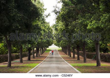 Par Caminando Tree-Lined Camino hacia el mausoleo en el Huntington, San Marino, California