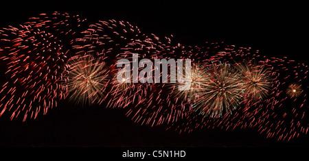Fuegos artificiales, luces festivas contra el negro cielo nocturno