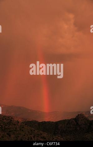 Un arco iris al atardecer durante una tormenta del monzón en las Montañas Santa Catalina, el Bosque Nacional de Coronado, Tucson, Arizona, EE.UU.