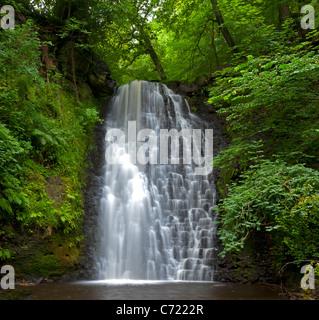 Caída Cascada de Foss, cerca de Whitby, Yorkshire del norte Foto de stock