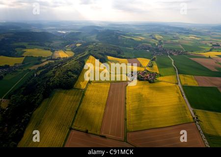 Vista aérea de campos de colza en flor, la aldea de Tuchtfeld en el Weser Hills, Baja Sajonia, Alemania Foto de stock