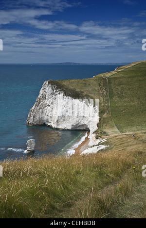 Una vista de Bat la cabeza mirando al oeste hacia White Nothe en el sendero costero en la costa Jurásica, en Dorset, Reino Unido.