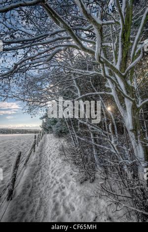 Un sendero cubierto de nieve entre campos abiertos y bosques en las zonas rurales el Condado de Durham.