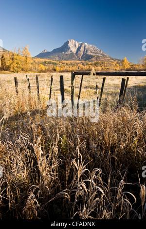 Campo y monte Hosmer en otoño cerca de Fernie, BC, Canadá.