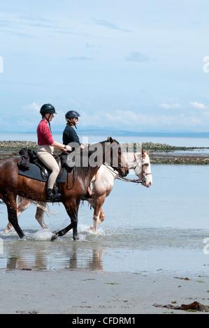 La mujer a caballo para la recreación en la playa en Merville, Isla de Vancouver, British Columbia, Canadá